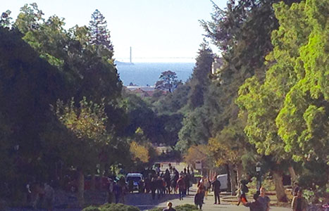 View of San Francisco Bay from UC Berkeley campus. photo by V. Chikovani