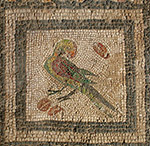 Mosaic, Roman period, Alexandria, Egypt, courtesy to C. Redmount
