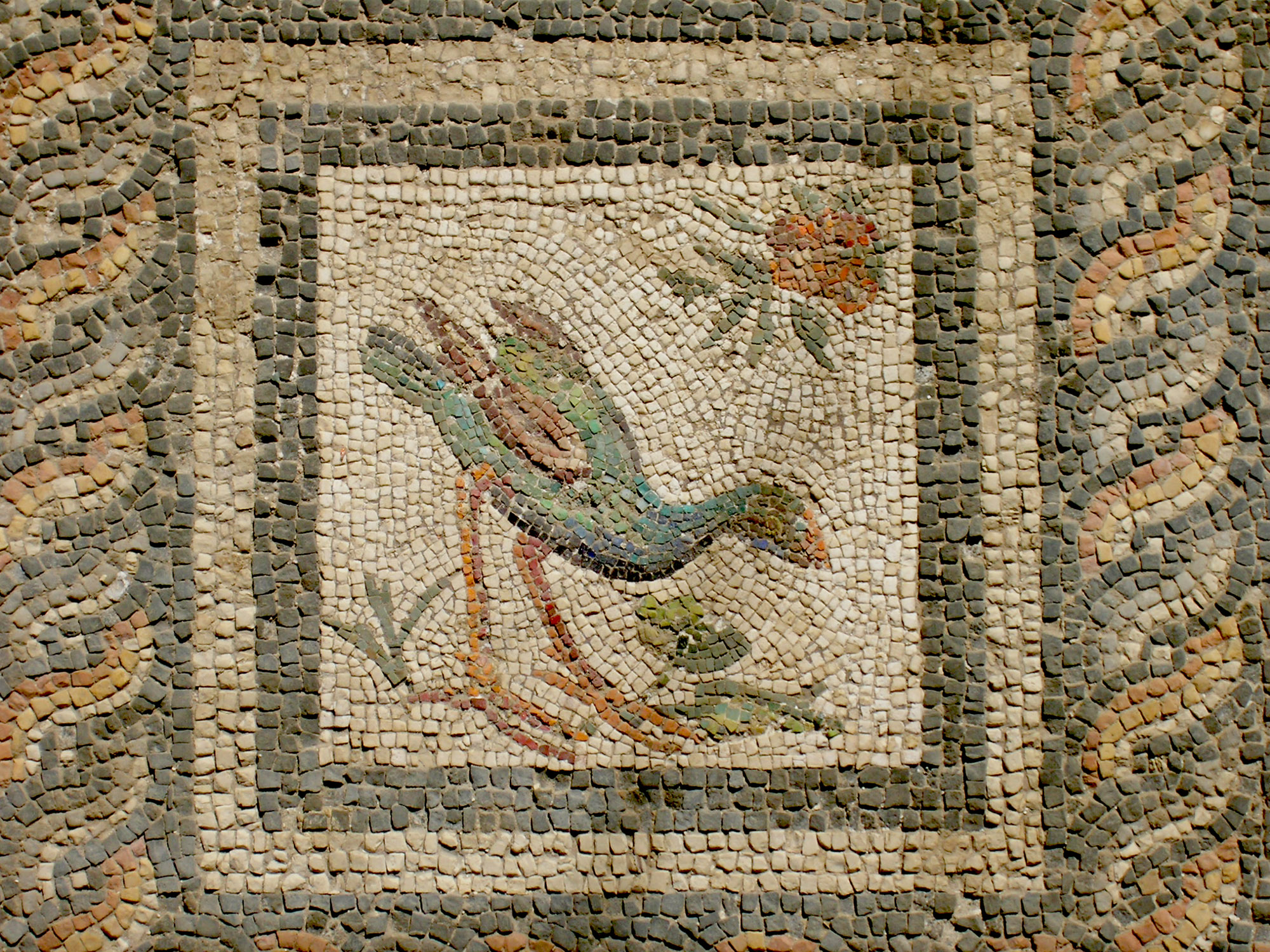 Mosaic, Roman period, Alexandria, Egypt, courtesy to C. Redmount and J. Li